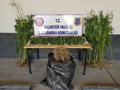 Jandarmadan Uyuşturucu Operasyonu Açıklaması 2 Gözaltı