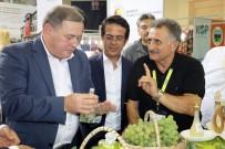 TARIM BAKANLIĞI - Rusya Tarım Bakan Yardımcısından 'Domates' Açıklaması