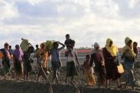 YAŞAM MÜCADELESİ - Türkiye Diyanet Vakfı'ndan Arakanlı 3 Bin Aileye Acil İnsani Yardım