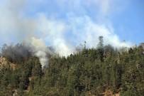 AHMET YıLMAZ - Yangın Kontrol Altına Alınamıyor