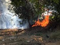 MANAVGAT IRMAĞI - Manavgat Irmağı Kenarında Yangın