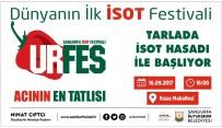 AŞıK SEFAI - Şanlıurfa'da İsot Festivali Başlıyor