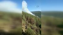 KAFKAS ÜNİVERSİTESİ - Yangın 7 Gün Sonra Söndürüldü