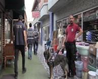 KÖPEK - Artvin'de Narkotik Köpekler Eşliğinde Sokak Uygulaması