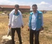 BÜYÜKBAŞ HAYVAN - Aslanapalı Genç Çiftçiler Devlete Minnettar