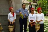 BAĞ BOZUMU - Altınköy'de Bağ Bozumu Şenliği Yapıldı