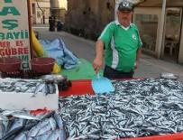 SU ÜRÜNLERİ - Balıkçılara erken hamsi avı uyarısı
