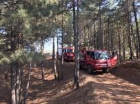 İŞ MAKİNESİ - Bingöl'de Çamlık Yangını