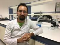 OXFORD ÜNIVERSITESI - Kanserle Mücadelede DNA Diziliminde Önemli Buluş