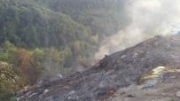ÇAKıRLı - Kastamonu'da Çöplük Alanda Yangın