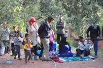 KONGO - Çanakkale'de Dağlık Alanda 122 Kaçak Yakalandı
