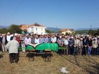 KURTULUŞ SAVAŞı - Cumhuriyet Nine Vefat Etti