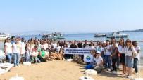 DENİZ CANLILARI - Gönüllüler Deniz Ve Kıyı Temizliği Yaptı