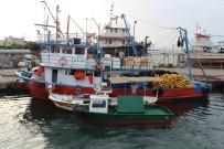 BALIKÇI TEKNESİ - İskenderunlu Balıkçılar 'Vira Bismillah' Dedi