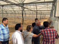 ARAŞTIRMACI - Kalkınma Bakanlığı Ve GAÜN BAP Destekli Proje Tamamlandı