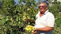 PROSTAT KANSERİ - Kansere Karşı Yerli Üretim Guava