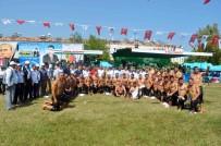 KEMER BELEDİYESİ - Kemer'de 550 Güreşçi Er Meydanına Çıktı