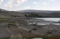 ÇıLDıR GÖLÜ - Kuraklık Çıldır Gölü'nü Vurdu