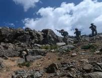 SALDıRı - Siirt ve Hakkari kırsallarında 13 terörist etkisiz hale getirildi