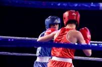 ALTUNTAŞ - Yıldız Erkekler Avrupa Boks Şampiyonası Başlıyor