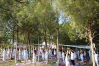 İSPANYOLCA - Yoga Festivalinde kaderini aş!
