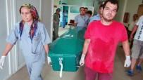 KıZKALESI - 5 Yaşındaki Çocuk 25 Bıçak Darbesiyle Öldürülmüş