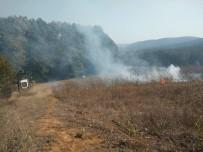 OKSIJEN - Başkan Yalçın, Yangın Yerinde İncelemelerde Bulundu