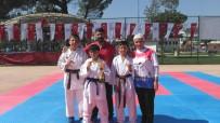 BERFIN - Biga'da Karate Turnuvası Düzenlendi