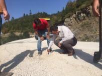 HAFTA SONU - Erbaa'da Köy Yollarında Asfalt Çalışması