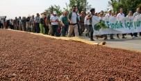 GİRESUN - Fındık İçin Adalet Yürüyüşünün İkinci Günü De Tamamlandı