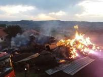 YANGINA MÜDAHALE - Kastamonu'da Yangında 800 Saman Balyası Yandı