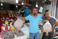 AV YASAĞI - Balıkçılarda Çifte Bayram
