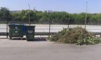 AKARCA - İzmit'te Budanan Ağaç Dalları Toplanıyor