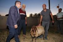 MEHMET DEMIR - Kaymakam Çetin, Kurban Kesemeyen Vatandaşlara Kurbanlık Koyun Dağıttı