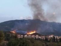 DAVUTLAR - Aydın'da 3 Ayrı Yerde Orman Yangını