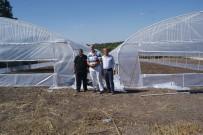 SALUR - 'Genç Çiftçi Projesi' İle Kendi İşlerini Kurdular