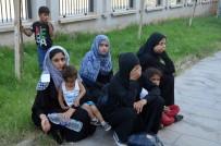 SINIR DIŞI - Hatay'da 29 Mülteci Yakalandı
