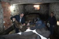 KARANTINA - Kdz. Ereğli'de Çok Sayıda Mahalle Ve Köy Karantina Altına Alındı