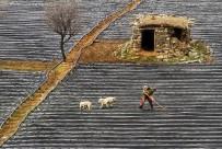 ALTIN MADALYA - Konyalı Fotoğrafçıya, Uluslararası Fotoğraf Yarışmasında Birincilik Ödülü