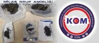 Milas'ta Uyuşturucu Operasyonu Açıklaması 1 Gözaltı
