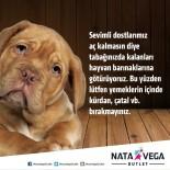 FAST FOOD - Nata Vega Outlet Alışveriş Merkezi'nde Artan Yemekler Sokak Hayvanlarına Veriliyor