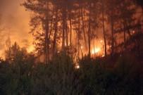 ŞÜPHELİ ARAÇ - Orman Yangınlarına Karşı Yasaklar Açıklandı