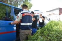 DALYAN - Ortaca'da 32 Kaçak Göçmen İle 2 Organizatör Yakalandı