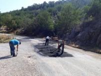 ONARIM ÇALIŞMASI - Selendi'de Seralarda Üretim Başlayacak