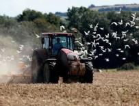 MİLYAR DOLAR - Türk traktör devi satıldı!