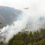 YANGINA MÜDAHALE - Yangına Havadan Ve Karadan Müdahale Ediliyor