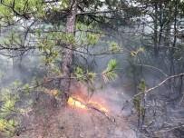 YANGIN HELİKOPTERİ - Yıldırım Sonucu 10 Ayrı Orman Yanıgını Çıktı
