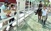 TÜRKIYE JOKEY KULÜBÜ - Buca'da Engelli Çocuklara Atla Terapi