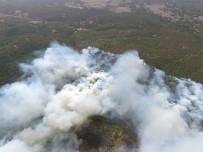 ORMAN YANGINI - Eskişehir'de Orman Yangını