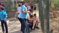 KAĞıTSPOR - Güreşçiler Hayvanat Bahçesini Ziyaret Etti